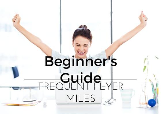 Beginners guide 1