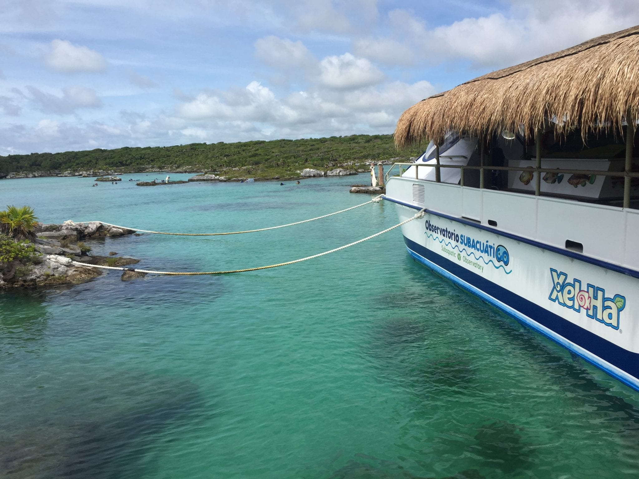 3 Reasons To Visit Xel Ha In Cancun A Review Global