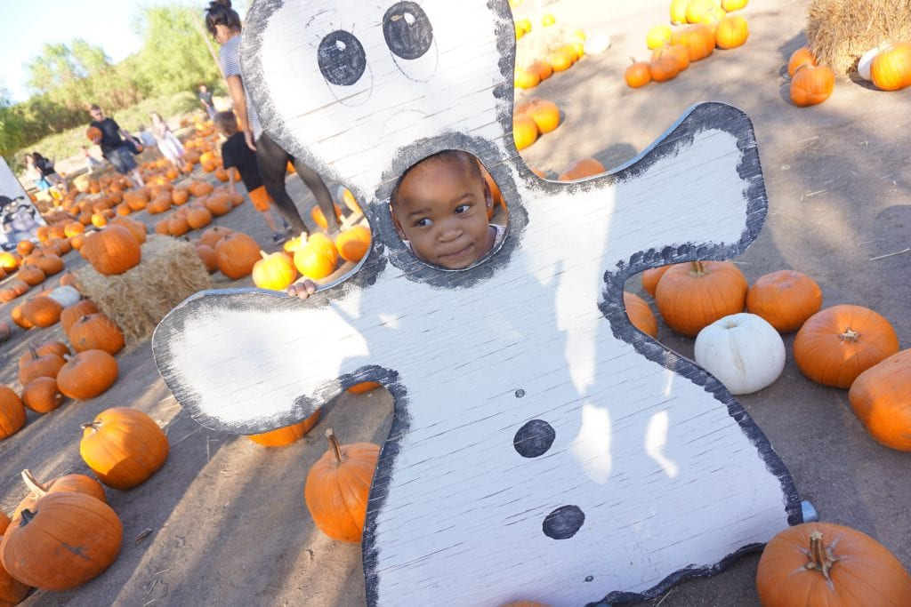 The Ultimate Guide to Halloween in Temecula Valley