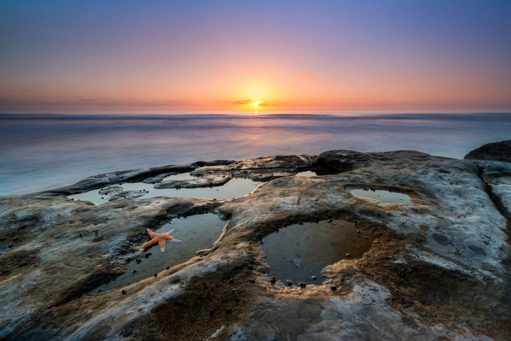 San Diego Tide Pools; Guide to the 10 Most Incredible Tide Pools