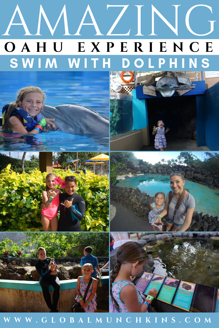Have you ever dreamed of becoming a marine biologist or dolphin trainer? Then you need to put Sea Life Park Hawaii at the TOP of your bucket list. Oahu has so many incredible experiences but swimming with dolphins at the SeaLife Hawaii Park Hawaii in Oahu, was one of my absolute favorites. #oahu #hawaii #hawaiivacation #swimming #dolphins #sealife #hawaiipark #familyvacation