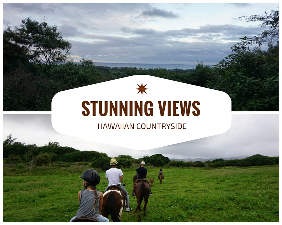 Amazing Things to Do in Oahu- 3 Reasons Gunstock Ranch is a MUST