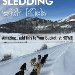 Want to know what its like to drive your own dog sled team? Dog Sledding, Colorado is a once in a lifetime experience.
