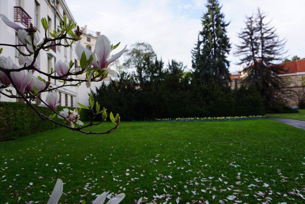 Garden_in_Prague