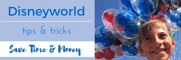 Disneyworld banner