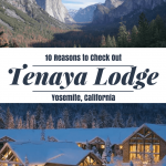 Yosemite Resorts are far and few between. Tenaya Lodge is the best place for families looking for a luxurious stay near Yosemite National Park.
