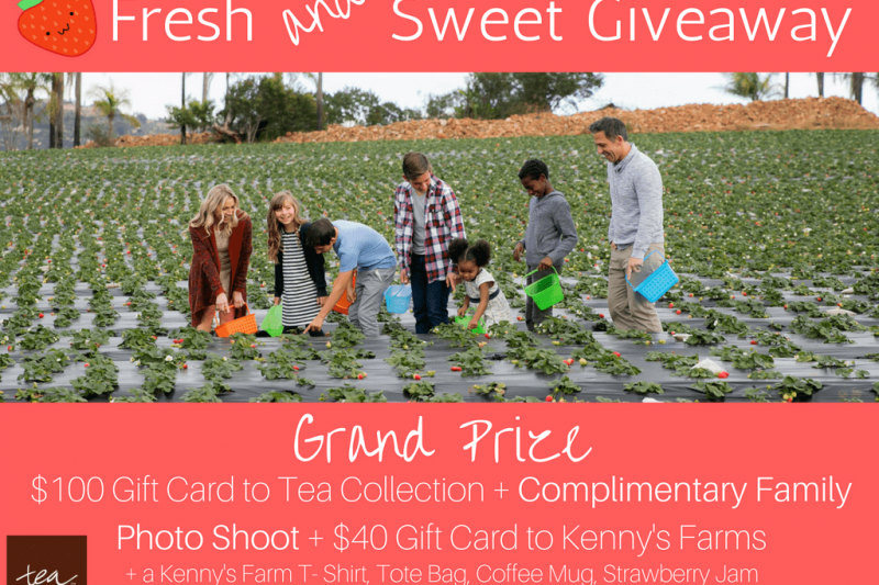 Win $100 to Tea Collection + $40 to Kenny's Strawberry Farm + a Complimentary Photo Shoot & more! Enter to win. Details in post