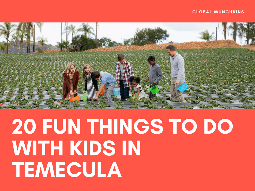 20 kid friendly things to do in temecula global munchkins for Top things to do in nyc with kids