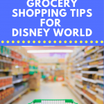Find grocery stores near Disney World. Save Money Easily with these Budget Friendly Disney World Tips. Learn how to grocery shop without getting out of the car + score our best tips for saving money on accommodations & more. #disneyworld #budgetfriendly #disneyworldtips