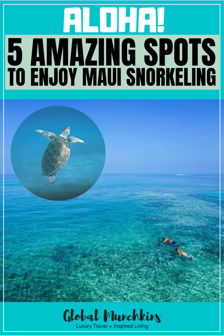 Here is a list of five of the best places to do some Maui snorkeling and my personal reviews on each spot. #maui #snorkeling #review #travel #hawaii #traveltips #destinations #hawaiivacation #familytravel