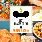5 Best Places to Eat at Animal Kingdom