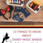 Disney Magic Bands 1