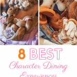 8 Best Character Dining Experiences at Disney World