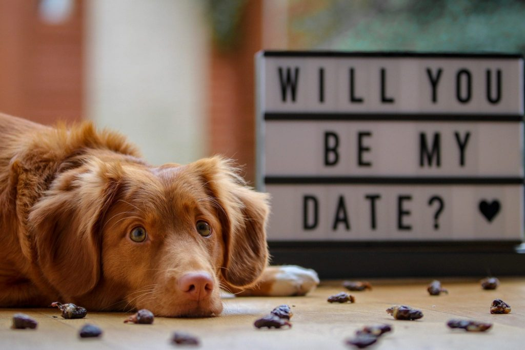 5 Romantic At-Home Date Ideas- super easy and sweet