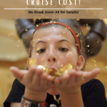 How Much Does a DIsney Cruise Cost!