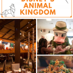 Animal Kingdom Restaurants