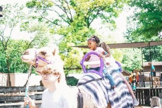 Things to do in Knoxville with Kids
