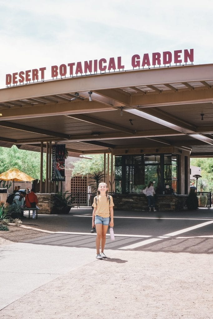 Tempe's Desert Botanical Garden is a beautiful place to explore Tempe's unique landscape.