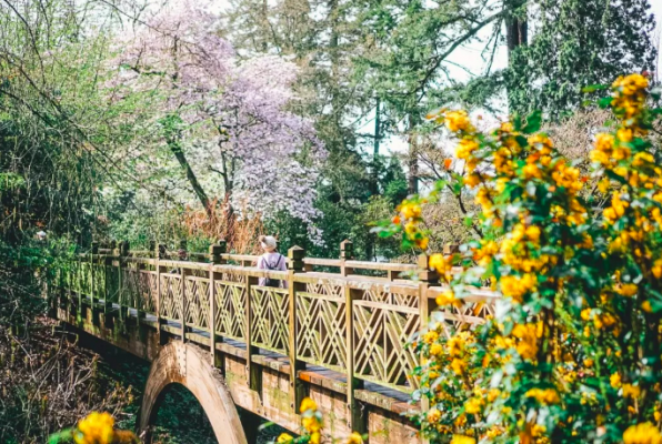 The Best Portland Hikes to take when Visiting Rip City
