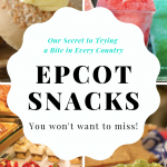 Best Snacks at Epcot