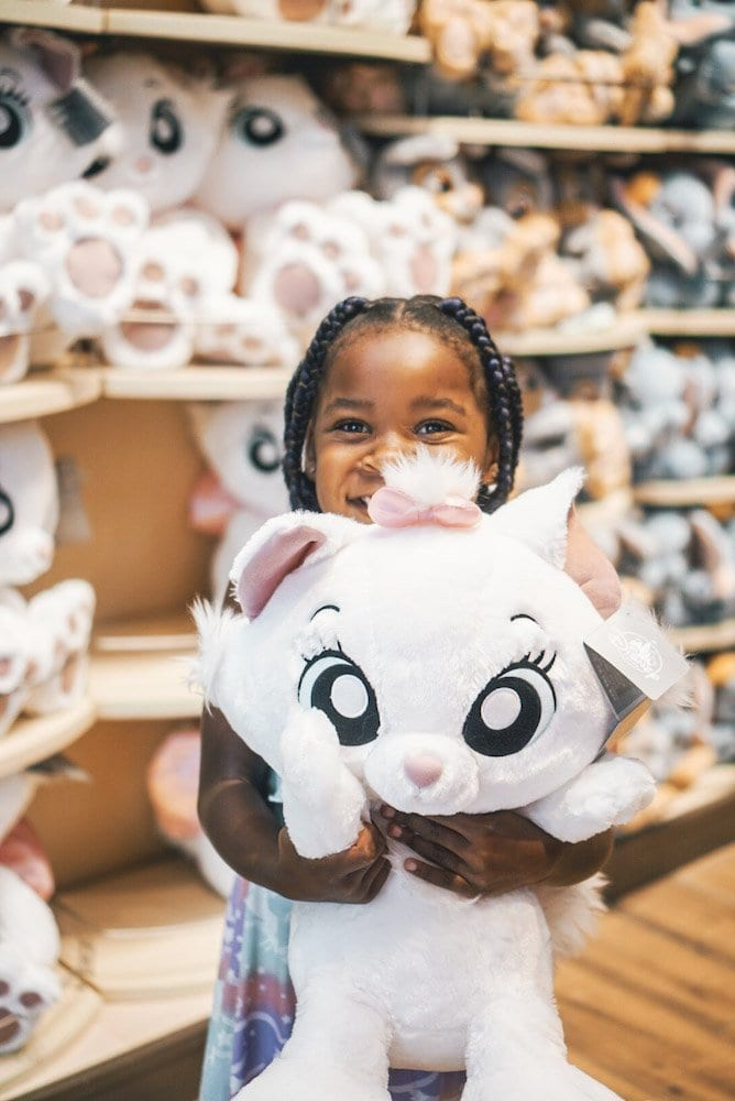 Disney World Costs - Souvenirs