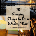 The Best Things to Do in Wailea