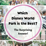 Which Disney Park is the Best  The Surprising Answer