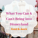 What You Can Cant Bring into Disneyland