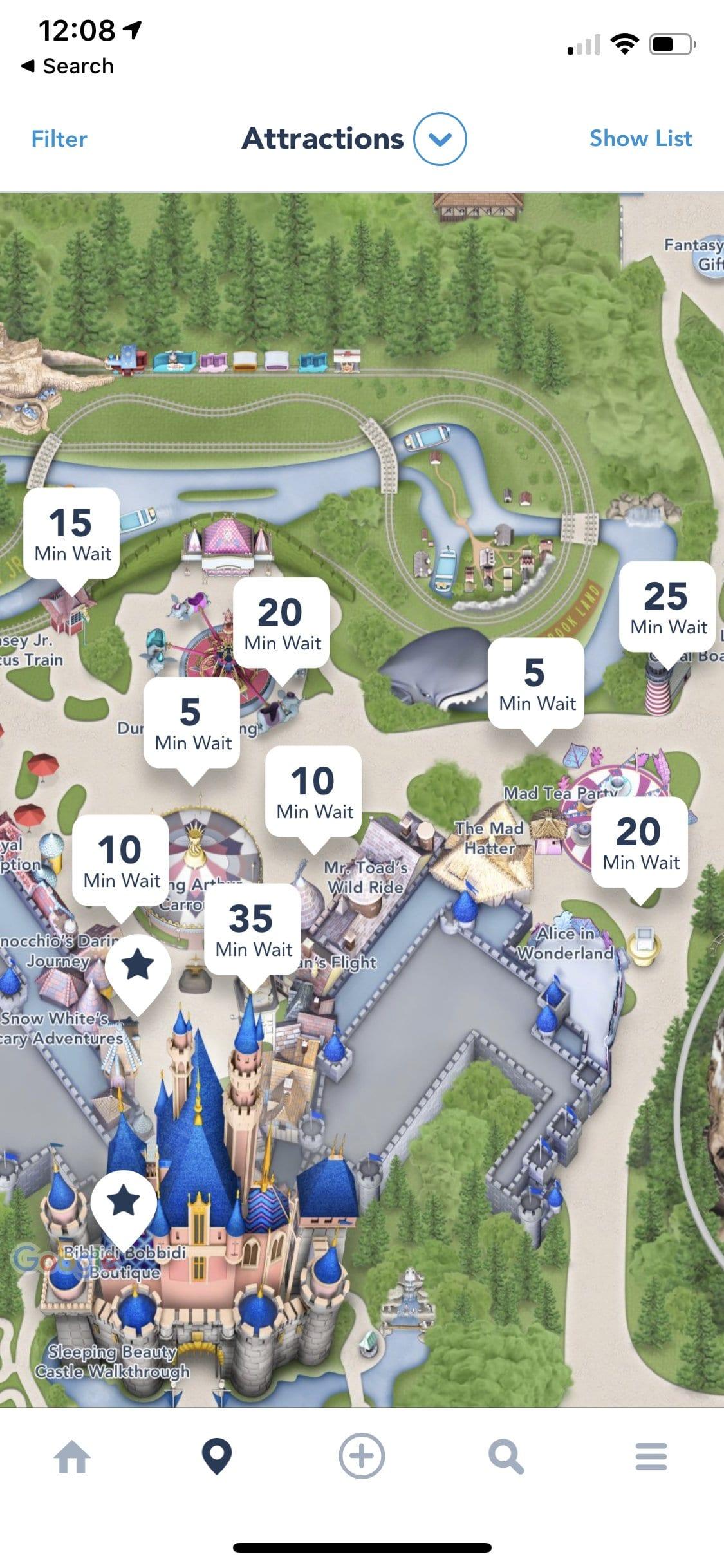 Disneyland in January