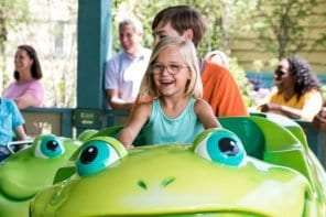 How to Score Discount Dollywood Tickets [7 Easy Ways!]