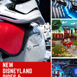 New Disneyland Rides & Attractions 2020!