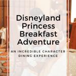Disneyland Princess Breakfast Adventure