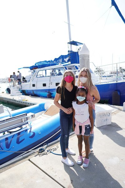 things to do in dana point - dolphin cruise