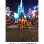 Best Disney World TIps