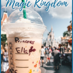 There are so many rides and so many Fast Passes to hit up at Magic Kingdom, quick service dining is pretty much a must. Well, no more begrudging the past because the Magic Kingdom has stepped up their game and has some great quick service dining options. Here is our list of the Best Magic Kingdom Quick Service Dining options. #traveltips #disneytravel #disney