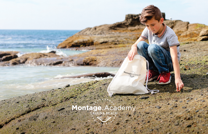 Montage Distance Learning